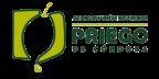 Aceite D.O.P. Priego de Córdoba